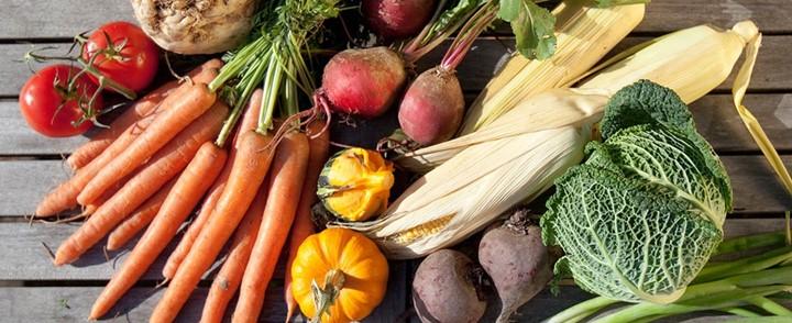 Biologische groenten op tafel bij cursus Orthomoleculaire voeding