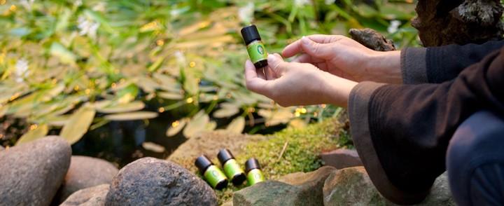 Overzicht flesjes etherische oliën in de natuur gebruikt bij de opleiding Aromatherapie
